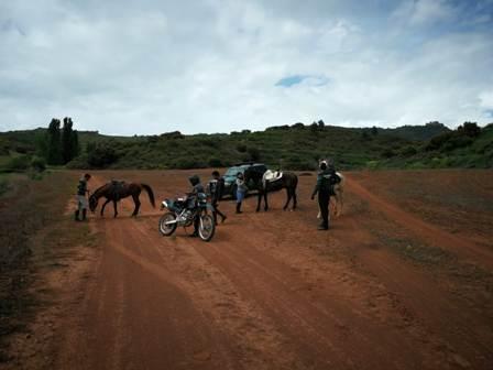 Denunciados tres jinetes que intentaron huir a caballo cuando fueron descubiertos saltándose el Estado de Alarma