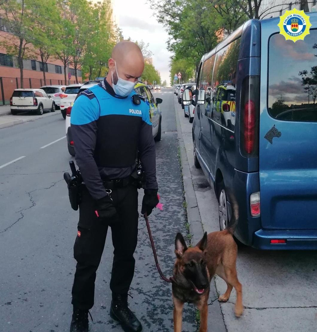 La policía de Alcorcón rescata a un perro abandonado en un vehículo que, además, estaba sustraído